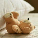 I canti del cuscino